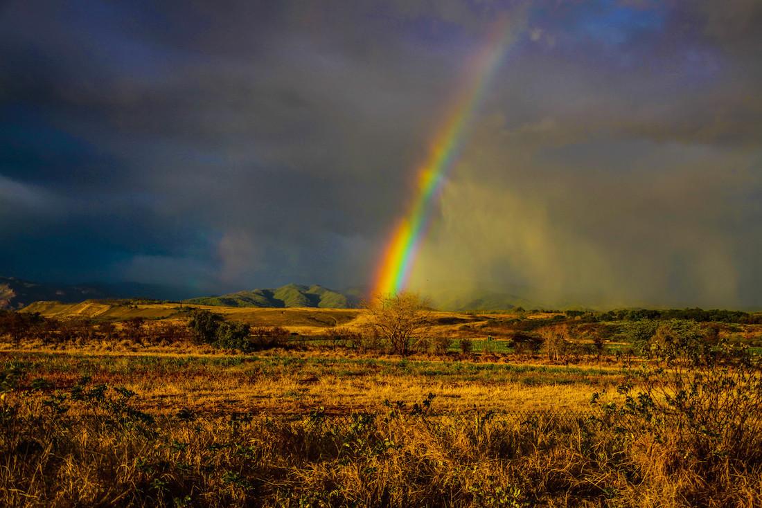 Rainbow ending over golden brush land